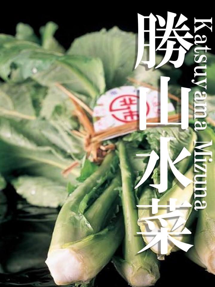 水菜 勝山 みず菜/ミズナ/水菜/京菜:旬の野菜百科